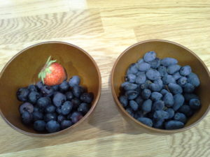 links: Blaubeeren, rechts: Haskap